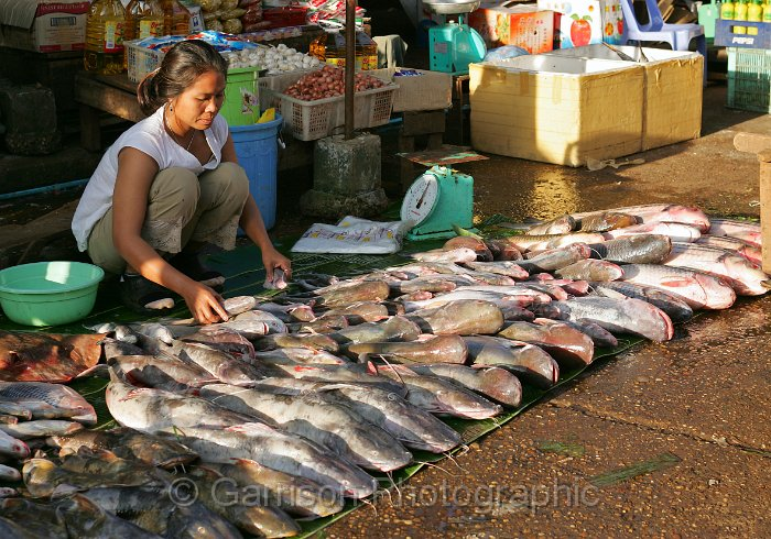 the fish market essay A market place is a very busy place where people go to buy articles of their needs it is a centre of attraction for both buyers and sellers there is no other place in the area having so much brisk business as the market.